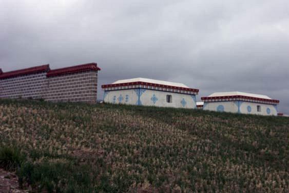 Qinhai-lake11.jpg